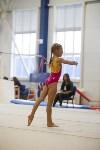 Спортивная гимнастика в Туле 3.12, Фото: 99