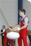 Первый этап Всероссийских соревнований по спортивной гимнастике среди юношей - «Надежды России»., Фото: 17