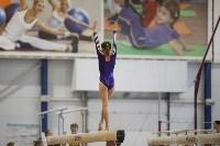 Спортивная гимнастика в Туле 3.12, Фото: 166