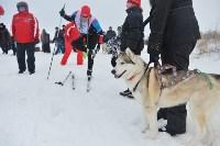 Праздник северных собак на Куликовом поле , Фото: 71
