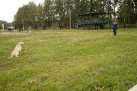 Испытания кинологов в Тульском спасательном центре, Фото: 54