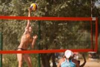 Пляжный волейбол в Барсуках, Фото: 22