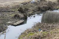 С заброшенных очистных канализация много лет сливается под заборы домов, Фото: 4