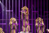 Шоу фонтанов «13 месяцев» в Тульском цирке – подарите себе и близким путевку в сказку!, Фото: 64
