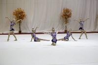 """Соревнования по художественной гимнастике """"Осенний вальс"""", Фото: 48"""