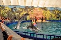 Шоу карибских дельфинов, Фото: 15