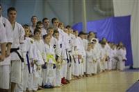 Соревнования на Кубок Тульской области по каратэ версии WKU. 29 декабря 2013, Фото: 13