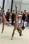 Первый этап Всероссийских соревнований по спортивной гимнастике среди юношей - «Надежды России»., Фото: 42