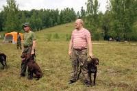 Выставка охотничьих собак под Тулой, Фото: 83