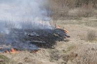 В Мясново загорелось поле, Фото: 4