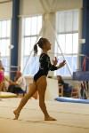 Спортивная гимнастика в Туле 3.12, Фото: 96