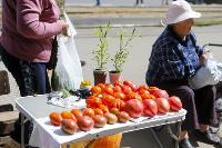 Незаконная торговля «с земли»: почему не все туляки хотят идти на рынки?, Фото: 9