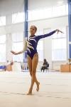 Спортивная гимнастика в Туле 3.12, Фото: 174