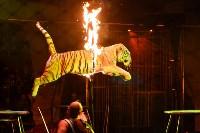 Цирковое шоу, Фото: 120