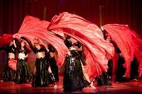 В Туле показали шоу восточных танцев, Фото: 139
