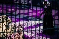 Шоу Lovero в тульском цирке, Фото: 37