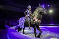 Туляков приглашают на новогоднее представление «Ёлка в цирке», Фото: 75