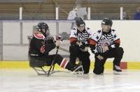 «Матч звезд» по следж-хоккею в Алексине, Фото: 11