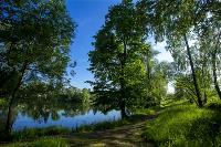 Летний день в Ясной Поляне, Фото: 38