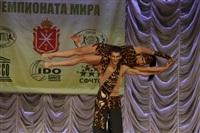 Всероссийский конкурс народного танца «Тулица». 26 января 2014, Фото: 100