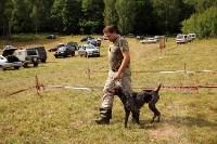 Выставка охотничьих собак под Тулой, Фото: 94
