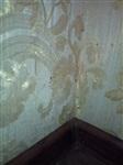 Невыносимые условия в доме №15 по улице Хворостухина, Фото: 1