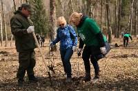 Посадка деревье в Ясной Поляне. 17.04.2015, Фото: 42