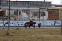 В Туле Упа подтопила Пролетарскую набережную, Фото: 19
