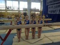 Туляки на соревнованиях по спортивной гимнастике в Брянске., Фото: 24