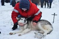 Праздник северных собак на Куликовом поле , Фото: 14