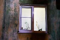 День светящихся окошек в объективах фотографов Myslo, Фото: 14
