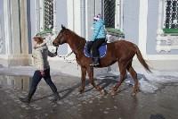 В Тульском кремле проходят масленичные гуляния, Фото: 48