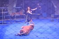Цирковое шоу, Фото: 104