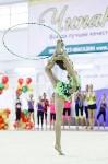Художественная гимнастика. «Осенний вальс-2015»., Фото: 119
