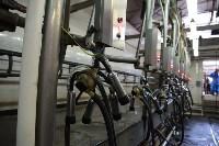 Конкурс профессионального мастерства среди операторов машинного доения коров, Фото: 28