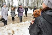 В Комсомольском парке прошёл рейд по выявлению собачников-нарушителей, Фото: 27