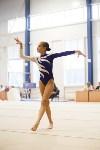 Спортивная гимнастика в Туле 3.12, Фото: 173
