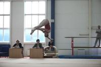 Соревнования по спортивной гимнастике на призы Заслуженных мастеров спорта , Фото: 30