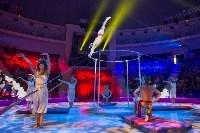 Тульский цирк, Фото: 6