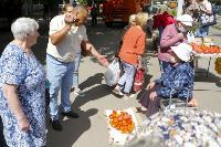 Незаконная торговля «с земли»: почему не все туляки хотят идти на рынки?, Фото: 16