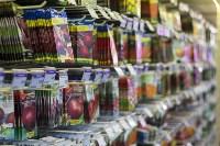 Леруа Мерлен: Какие выбрать семена и правильно ухаживать за рассадой?, Фото: 7