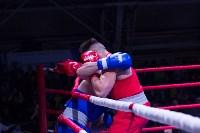В Туле прошли финальные бои Всероссийского турнира по боксу, Фото: 100
