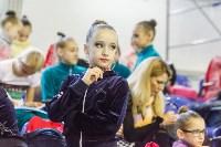 Кубок общества «Авангард» по художественной гимнастики, Фото: 60