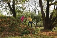 Золотая осень в Тульской области, Фото: 3