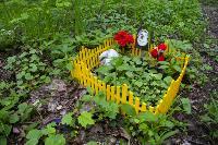 Кладбище домашних животных в Туле, Фото: 6