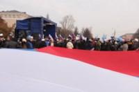 Митинг в честь Дня народного единства, Фото: 85