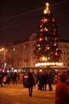 Открытие центральной елки в Новомосковске, Фото: 16