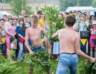 Фестиваль, Фото: 33