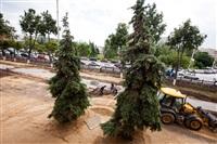 На территории кремля снова начались археологические раскопки, Фото: 48