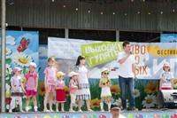Фестиваль дворовых игр, Фото: 33